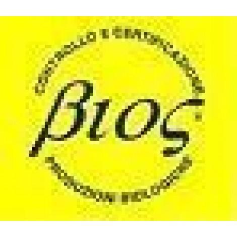 Zucca Moscata Butternut - Sativa Biologica